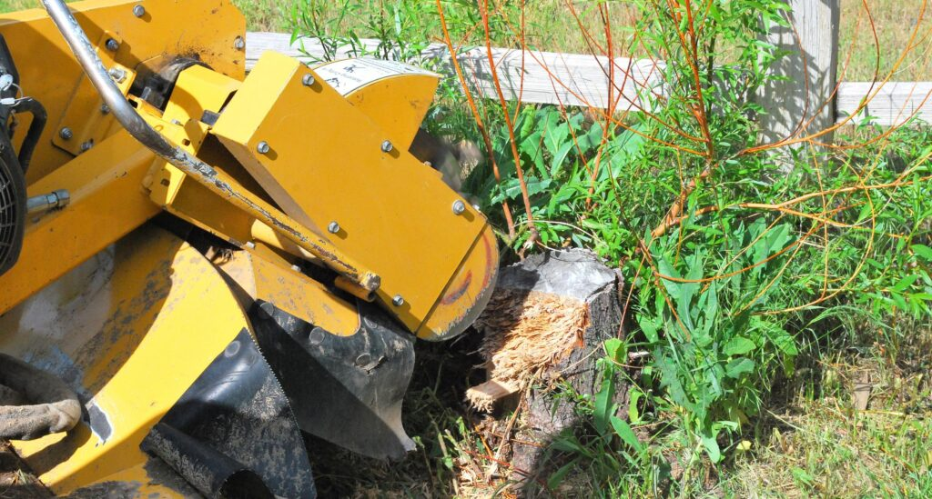 professional brush removal and wood chipping